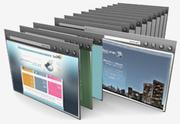 custom software development services-VISINFOTECH