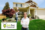 Pest control castle hill